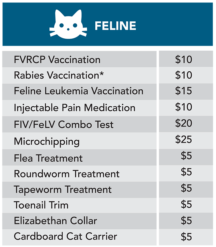 Feline treatment price table graphic