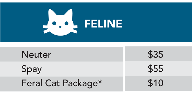 Feline spay neuter prices graphic table
