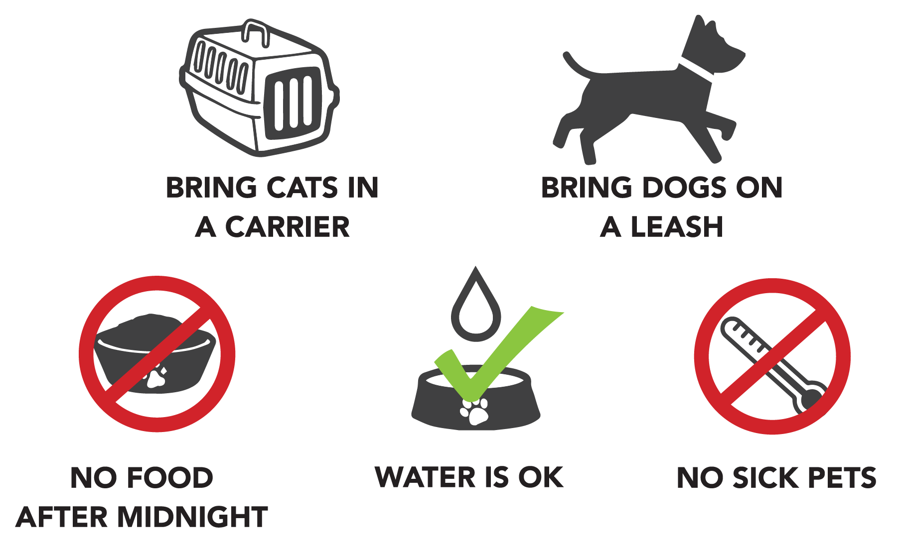 Whats ok and not ok for your pet prior to surgery graphic icons